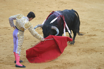Foto op Textielframe Stierenvechten bullfighting in seville, spain.