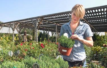 buying plants