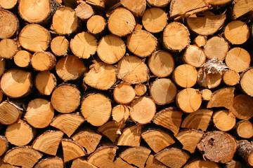 Photo sur Aluminium Texture de bois de chauffage wood