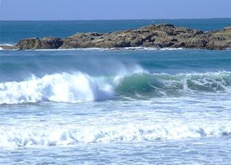 surfing 55.