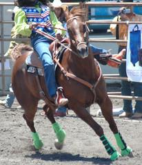 barrel racer