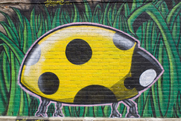 ladybird graffiti
