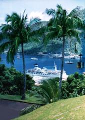 cruise ships in bay