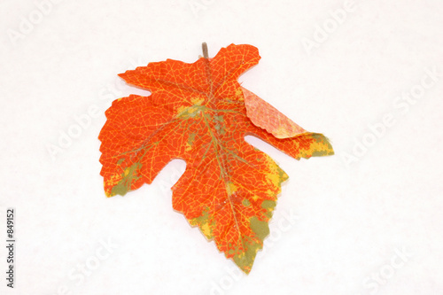 Herbst Blatt Stock Photo And Royalty Free Images On Fotolia Com