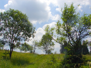 landscape in bosnia