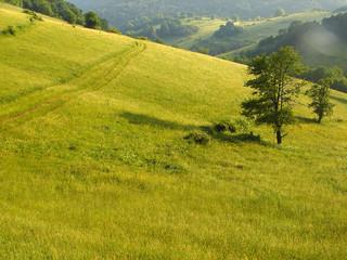 summer landscape 2