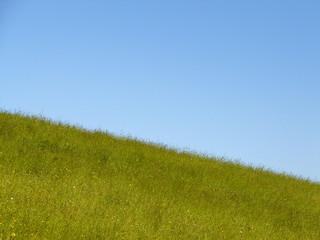 sky is blue grass is green