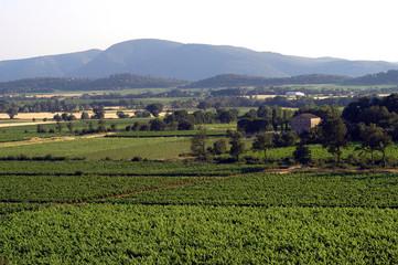 paysage cevennol