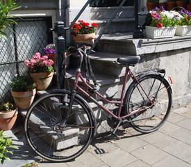 amsterdam's bike