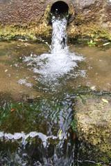 natur, quell, sprudel,eiswasser