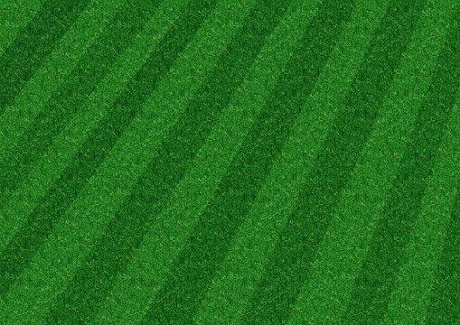 stripey lawn