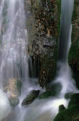 creek and falls