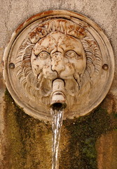 Aluminium Prints Fontaine fontaine lion