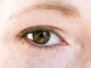 macro - human eye