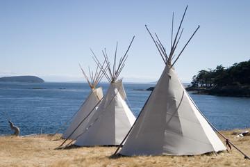 Printed kitchen splashbacks Indians three teepees