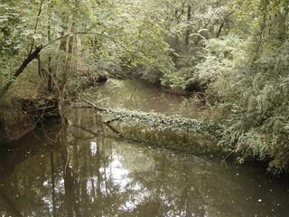 beautiful creek
