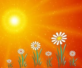 optimistic flowers