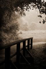 sepia-toned wooden bridge and path