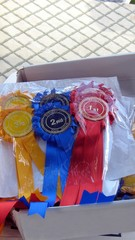 rosettes for first,second,&third place in dog show