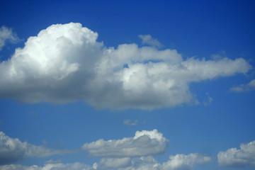floating cumulus