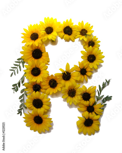 Floral Letter R Stock Photo And Royalty Free Images On Fotolia Com
