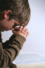 young boy praying over his bible