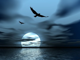 black night. moon