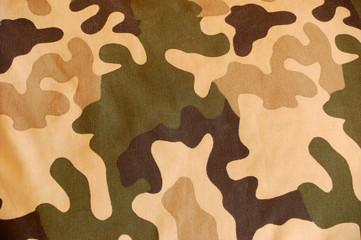 camouflage background #4