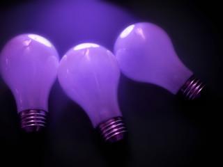 bulbs 3