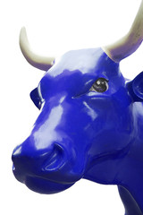 blauer stier auf weissem hintergrund freigestellt