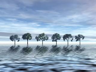serenity. trees in ocean