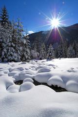 winter in alpine valley