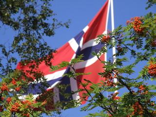 norwegian flag at stalheim, norway