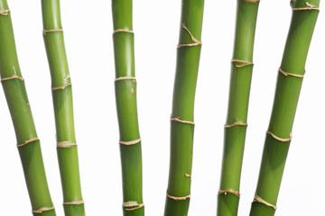 6 bambus halme
