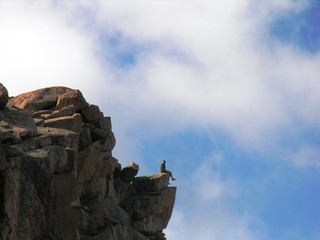 man sitting on a rocky ledge