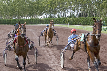 course de chevaux