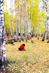 dream's white birch