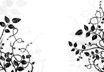 black and white background illustration