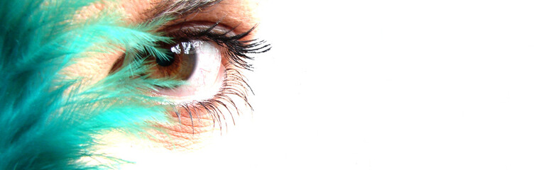 ojo pluma verde