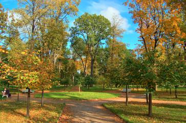 photo of park