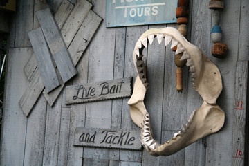 live bait and tackle sign