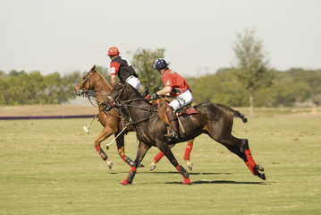 texas polo match