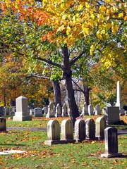 Wall Murals Cemetery cemetery in autumn 8