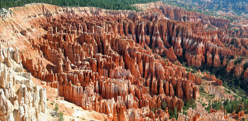bryce canyon amphitheater - panoramic
