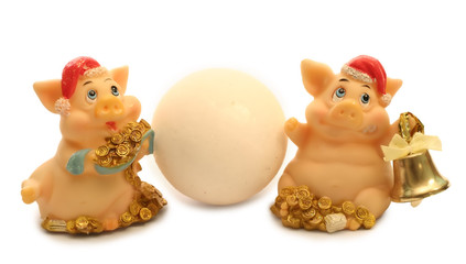 2 pigs with snowball