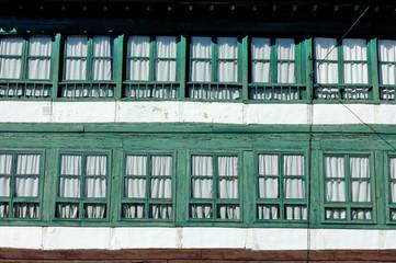 façade fenetre verte