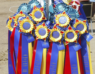award ribbons2