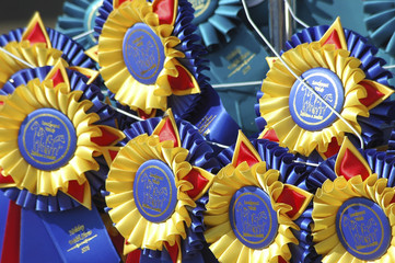 award ribbons on hangers