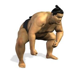 sumo wrestler 2