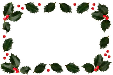 holly leaf and berry border